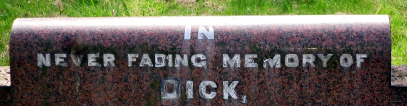 some dick's grave