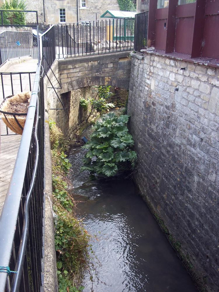 george and dragon batheaston a river runs through it