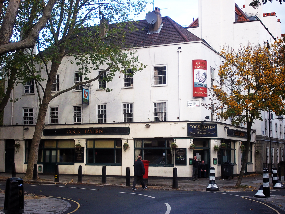 cock tavern euston london