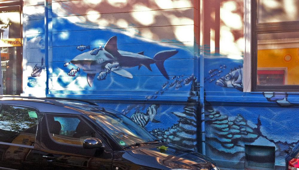 shark wall bremen