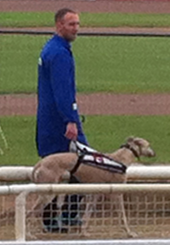 Abbey Stadium Swindon one of my losing dogs